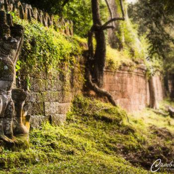 Angkor photography Garuda