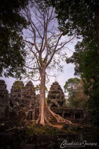 Banteay-Kdei angkor wat_2451